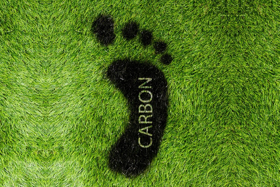 carbon footprint in grass